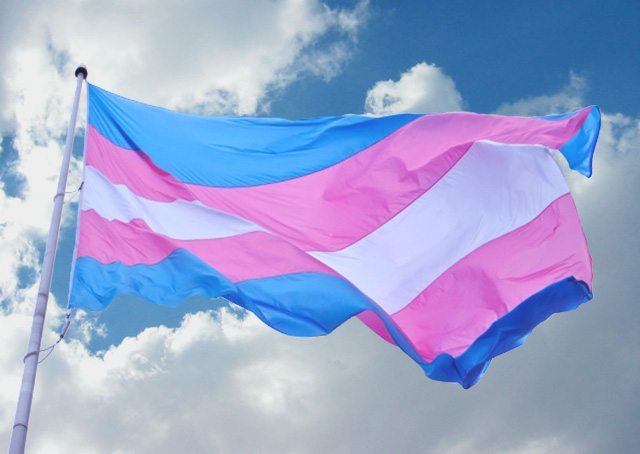 Auckland Transgender Ball Postponed | express Magazine