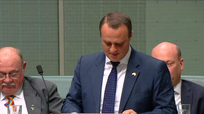 Tim Wilson gay politician marriage proposal express