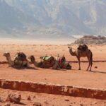 Morocco-Jordan 1056