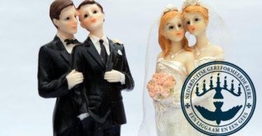 same-sex union Dutch Reformed Church